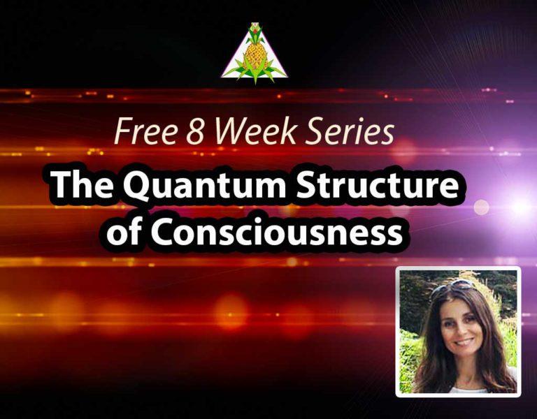 The Quantum Structure of Consciousness
